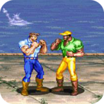 Dinosaurs Fighter for PC