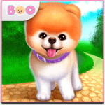 Boo - The World's Cutest Dog for PC