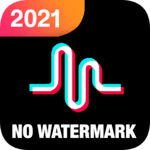 Video Downloder for TikTok - Without Watermark for PC