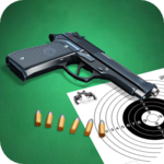 Pistol shooting at the target.  Weapon simulator. for PC