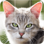 Free Picture Puzzle: Cats for PC