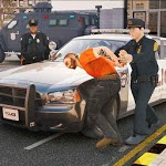 virtual police officer simulator: cops and robbers for PC